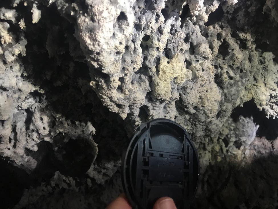 buffalo cave